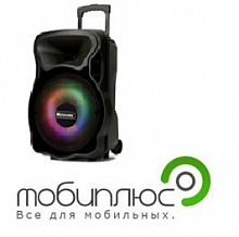 "BIG Bluetooth MEIRENDE MR-15Ach 15"" Bluetooth/USB/SD/FM/AUX/микрофон, черный 06"